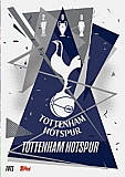 Tottenham Badge